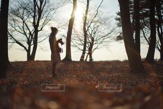 木の隣に立っている男の写真・画像素材[880323]