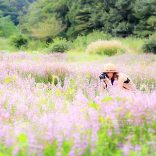 花の写真を撮る女性の写真・画像素材[895744]