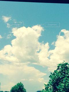 空の写真・画像素材[198812]