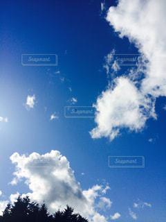 空の写真・画像素材[232725]