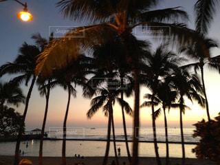 海,夕日,ビーチ,景色,観光,旅行,ハワイ,夕景,リゾート,サンセット,海外旅行,ホノルル