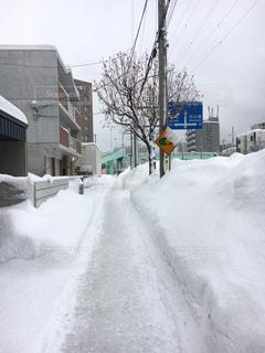 雪に覆われた通りの写真・画像素材[885222]