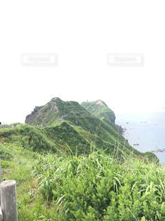 近くの丘の中腹のアップの写真・画像素材[885235]