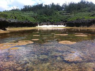 水の体を流れる川 - No.901500