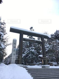 北海道神宮へ初詣の写真・画像素材[964287]