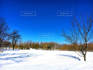 雪に覆われたフィールドの上に立っている人の写真・画像素材[1116180]