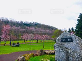 近くにフィールドの真ん中に岩のアップの写真・画像素材[1178733]