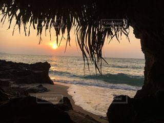 水の体の前でヤシの木とビーチの写真・画像素材[1392051]