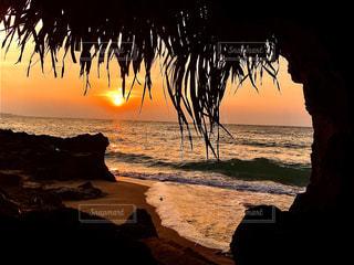 自然,海,空,屋外,太陽,ビーチ,砂浜,夕暮れ,波,海岸,光,草木