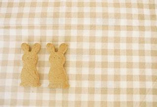 うさぎ,茶色,おやつ,お菓子,クッキー,おかし,ベージュ,ミルクティー,ギンガムチェック,ミルクティー色