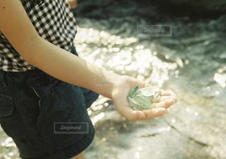 海の写真・画像素材[2008233]