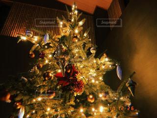 冬,カメラ女子,綺麗,イルミネーション,クリスマス,クリスマスツリー
