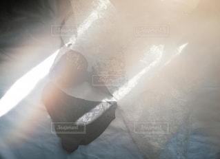 天使のブラの写真・画像素材[2368881]