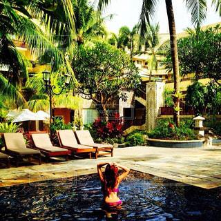 Bali - No.458073