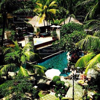 Bali - No.458075