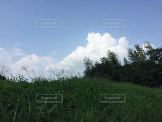 田舎のなつぞらの写真・画像素材[2477821]