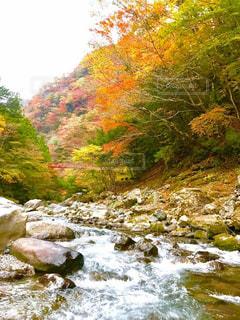 滝の水の体の上に行くの写真・画像素材[876652]