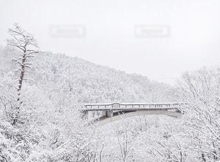 雪景色の写真・画像素材[1014948]