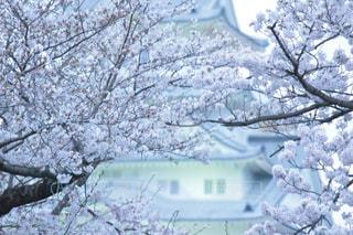 風景 - No.427125