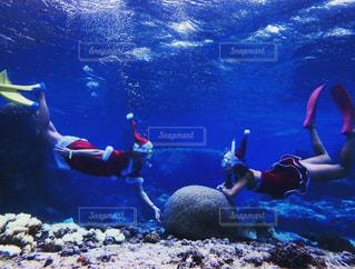 海,夏,水着,沖縄,旅行,クリスマス,サンタ