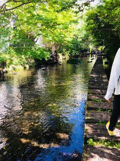 川の横に立っている人の写真・画像素材[1165789]