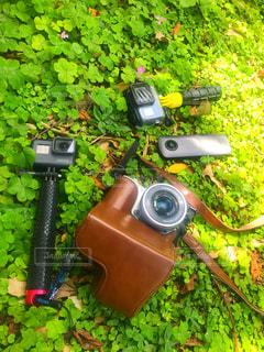芝生に座っているオートバイの写真・画像素材[1172014]