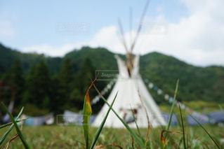 草原の写真・画像素材[444641]