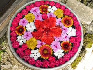 皿の上のケーキの写真・画像素材[900439]
