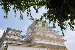 夏の姫路城の写真・画像素材[1051497]