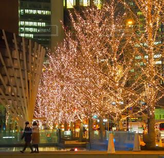 夜,屋外,綺麗,樹木,イルミネーション,都会,街灯,明るい,通り,グランフロント,お出かけ,うめきた,シャンパンゴールド