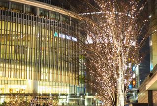 建物,夜,綺麗,イルミネーション,都会,お店,灯り,明かり,明るい,グランフロント,シャンパンゴールド