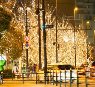 夜,屋外,車,樹木,イルミネーション,都会,灯り,明るい,通り,グランフロント,シャンパンゴールド
