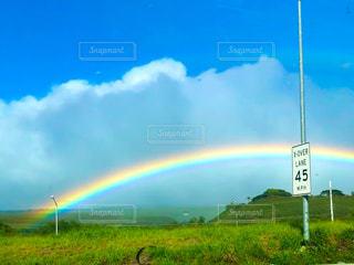 緑の草の上に虹の写真・画像素材[2985229]