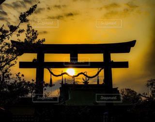 暗闇の中に夕日のある木の写真・画像素材[3395301]