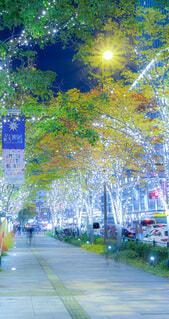 建物,ライトアップ,クリスマス,歩道,イルミ,グランフロント,グランフロント大阪,シャンパンゴールド,Grand Wish Christmas 2020