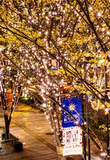 建物,ライトアップ,クリスマス,歩道,イルミ,グランフロント,待ち合わせ,グランフロント大阪,シャンパンゴールド,Grand Wish Christmas 2020,Winter Voyage Tree,「Winter Voyage -世界を繋ぐ希望の旅-」