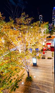 建物,屋内,屋外,気球,樹木,イルミネーション,ライトアップ,クリスマス,明るい,イルミ,グランフロント,グランフロント大阪,シャンパンゴールド,クリスマス ツリー,グランフロントクリスマス,Grand Wish Christmas 2020,Winter Voyage Tree,「Winter Voyage -世界を繋ぐ希望の旅-」