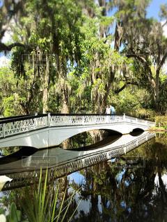 公園,橋,屋外,緑,アメリカ,観光,旅行,緑地