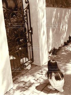 犬,動物,屋外,子供,女の子,人物,門,セピア色,塀,路地,玄関,通り,小型犬,出会い