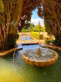 アルハンブラ宮殿庭園の写真・画像素材[2110214]