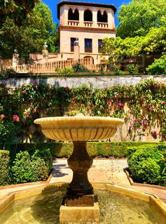春,晴れ,水滴,観光地,ヨーロッパ,観光,庭園,旅行,噴水,水玉,スペイン,雫,しずく,休暇,グラナダ,アルハンブラ宮殿,アルハンブラ