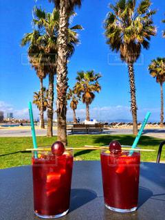 夏,椰子の木,青空,観光地,海岸,ヨーロッパ,観光,旅行,旅,ワイン,グラス,レストラン,ヤシの木,スペイン,バルセロナ,乾杯,夏休み,ドリンク,サングリア,バルセロネータ