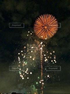 夜空に向日葵の写真・画像素材[3610011]