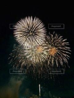 夜空に向日葵の写真・画像素材[3610107]