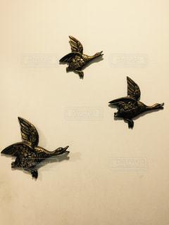 インテリア,鳥,アンティーク,壁,真鍮