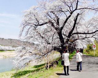 No.377942 風景