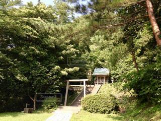 佐渡金山 高任神社の写真・画像素材[799417]