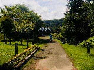 北海道 夕張 幸福の黄色いハンカチ想い出ひろばの写真・画像素材[800934]