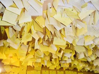 北海道 夕張 幸福の黄色いハンカチ想い出ひろばの写真・画像素材[800944]