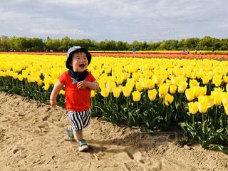 花と私の写真・画像素材[903557]